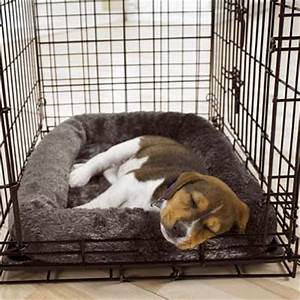 puppy crate training why it works doggy and the city With small dog training crate