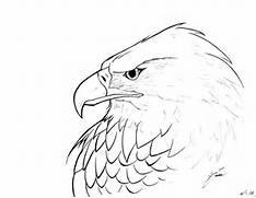 Simple Eagle Head Draw...