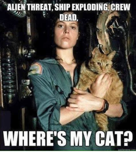 Cat Alien Meme - alien threat shipexploding crew dead where s my cat meme on me me