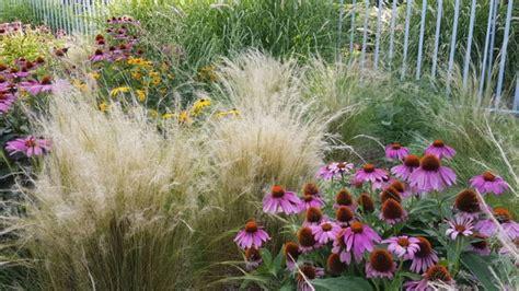 Gartengestaltung Mit Gräsern by Gartengestaltung Mit Bambus Und Gr 228 Sern Royalcleaning Club