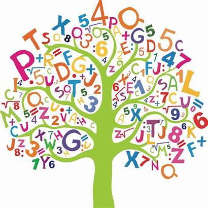Mathematics Project Early Math Maths Tree Numbers