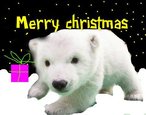 merry christmas animals