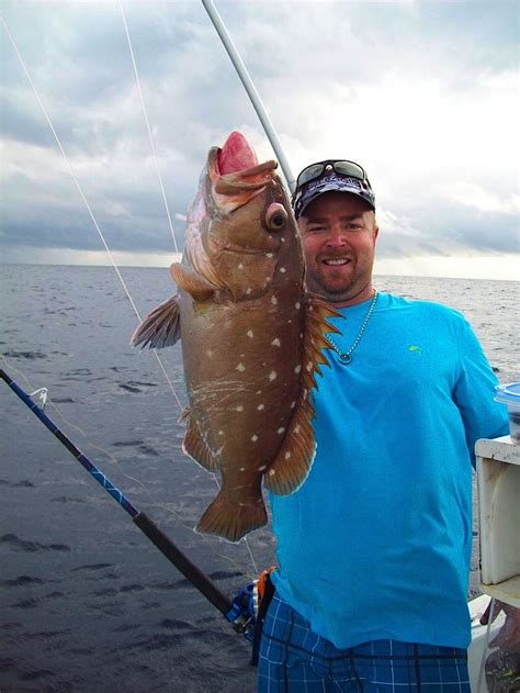 grouper florida sportsman offshore