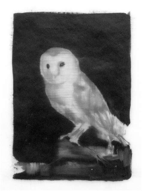 Owl by Karyn Lyons | Artfully Walls