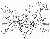 Birds Baby Coloring Pages Printable Bird Animals Categories sketch template