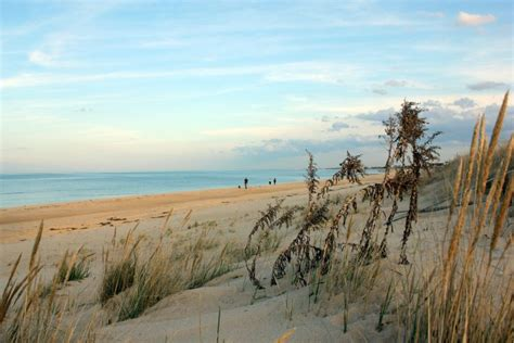 beautiful   beaches  virginia