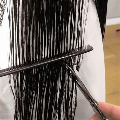 Shag Haircut Definitely Cutting Brunette Behindthechair Views