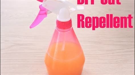 natural cat repellent  home garden easy peasy