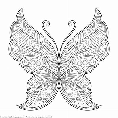 Butterfly Pattern Coloring Zentangle Patterns Decorative Drawings