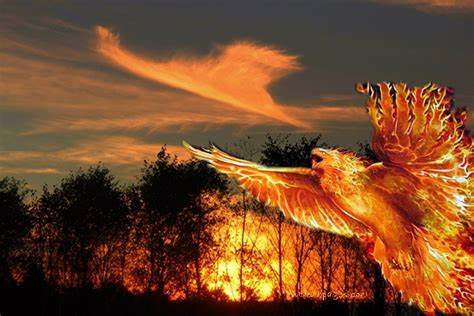 Mythical Fiery Bird Phoenix In Mythologies Of Many Ancient Cultures | Ancient Pages