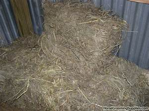 Is Straight Brome Hay Ok? - Good and Not Good Hays?