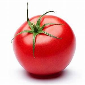Tomaten Krankheiten Bilder : tomaten anbauen tomaten pflanzen pflegen ~ Frokenaadalensverden.com Haus und Dekorationen