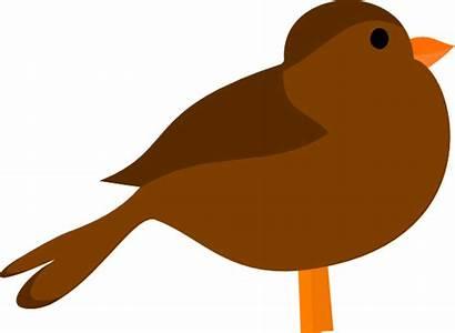 Bird Brown Clip Clipart Vector Clker