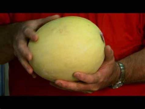 pick   ripe honeydew melon  david venable