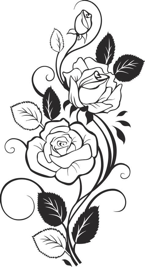 black  white rose vector  vector cdr