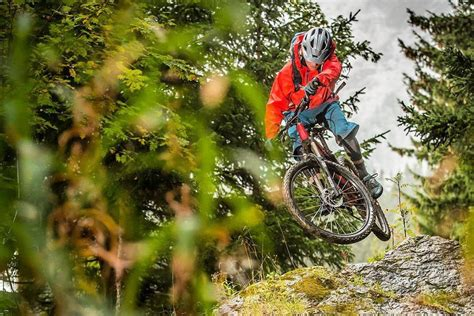 The Best Mountain Bikes for 2020 | Digital Trends