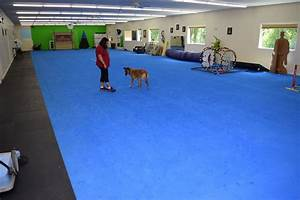 greatmats specialty flooring mats and tiles 50 year dog With dog training facility