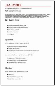 Cv sample for high school students myperfectcv for Cv high school