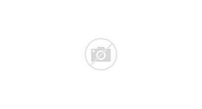 Trump Donald Trumpet Website Visitors Blast Face