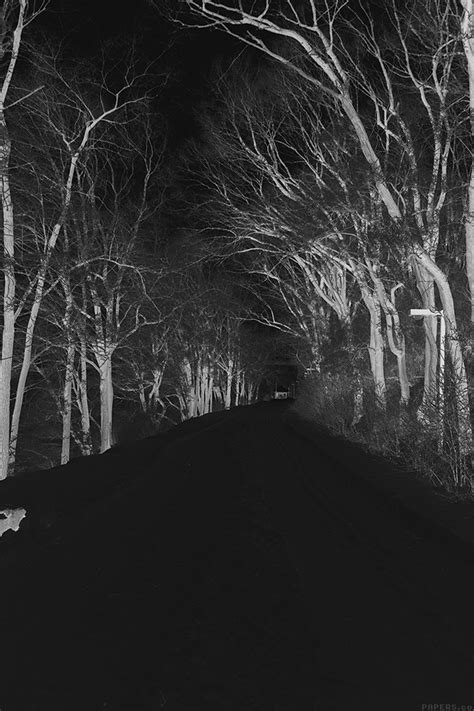 mp winter scary road nature mountain dark papersco