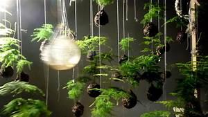 Japanese String Gardens Suspend Plants Above Ground