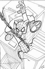 Ham Spider Getdrawings Drawing sketch template