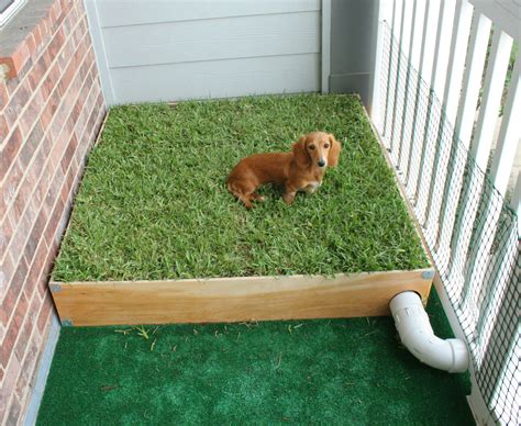 porch potty with real grass and drainage system