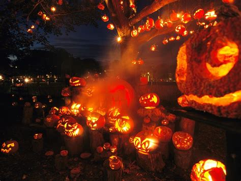 lots  jack  lanterns pictures   images