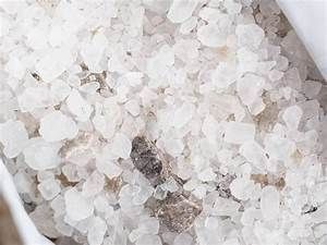 How To Protect Your Yard From Winter Salt
