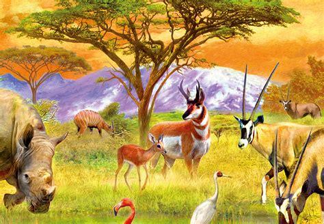 ausmalbilder fuer tiere lernen tierzeichnung wie