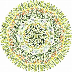 Vector Circle of Flower on white background Good for