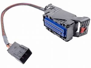 Gm E81 Ecm Programming Harness