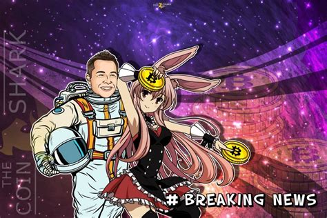 This was due to a message from tesla. Elon Musk Declares His Love for Anime and Bitcoins, the Twitter Community Blows Up   Аниме