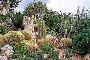 fileeze jardin exotiquejpg wikimedia commons With photo de jardin exotique 1 filechorisia monaco jpg wikimedia commons