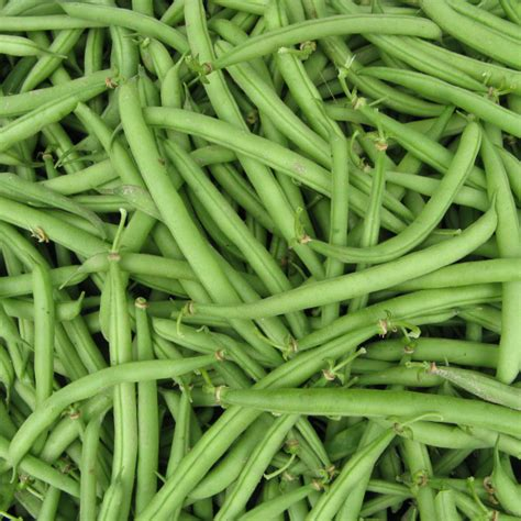 recette haricots verts blanchis