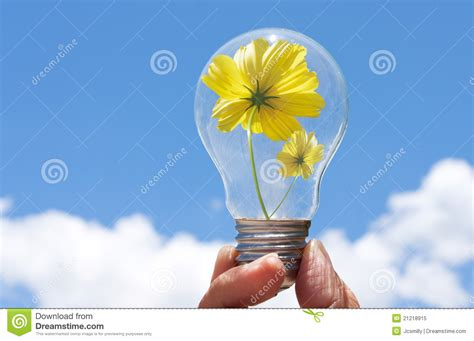 light bulb with beautiful flower inside royalty free stock