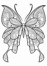 Coloring Butterflies Simple Children Animals sketch template