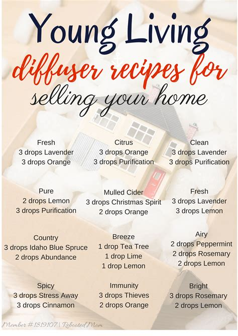 young living diffuser recipes  selling  home