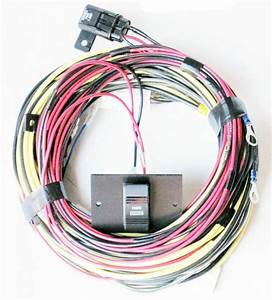 Larson Glastron Boats Stereo Radio Wiring Harness  U0026 Switch
