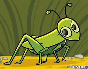 How to Draw a Grasshopper for Kids, Step by Step, Animals ...