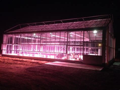 greenhouse led grow lights valoya led grow lights optimised for plant production
