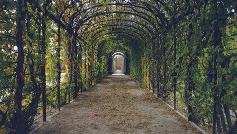 mercer arboretum and botanic gardens mercer arboretum and botanic gardens archives just vibe