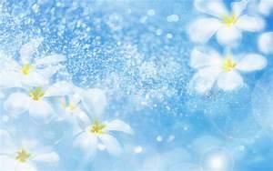 Flower Background Desktop Wallpaper 16343