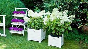Support Plante Intérieur : porte plante une touche fleurie dans la maison westwing ~ Teatrodelosmanantiales.com Idées de Décoration
