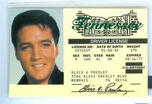 Npi And License Number Lookup  Memphis Drivers License Book