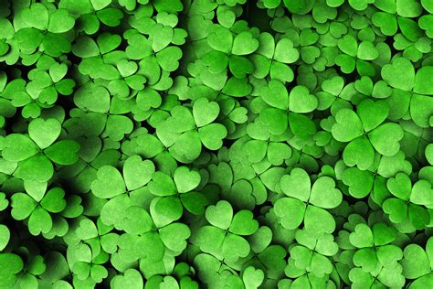 St. Patrick's Day Facts That Aren't True