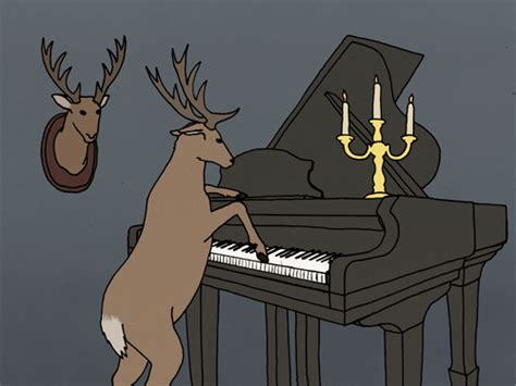 piano funny gif find  gifer