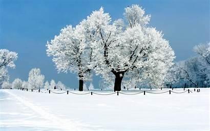 January Screensavers Wallpapers Desktop Winter Snow Nature