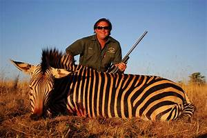 Mountain Zebra Hunting South Africa With Mkulu African