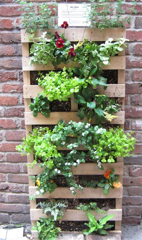 ideas  herb garden pallet  pinterest